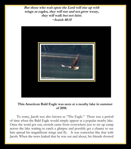Pic of Page 67 of CL The Eagle in large black frame